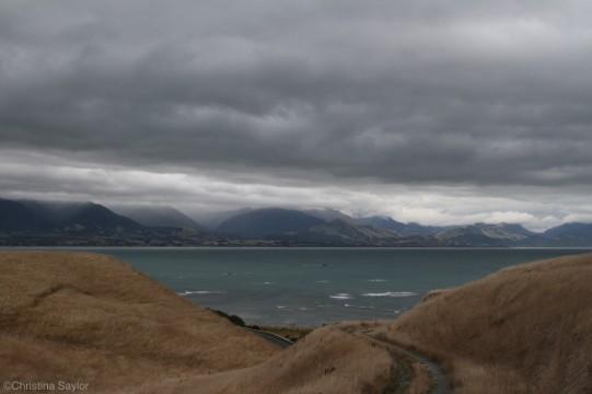 Paths to the sea on the Kaikoura Peninsula