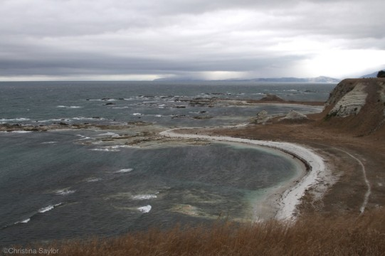 The first challenge: a windy walk on the Kaikoura Peninsula