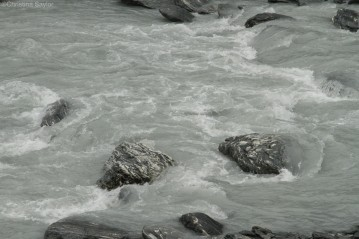 Streams tinted with glacial run-off in Franz Josef Glacier Park