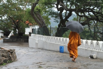 A monk in the afternoon rain near Kandy