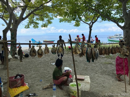 Fishing families selling their catch at the market in Beloi Village