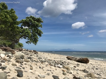 Gorgeous beach along a protected area in Adara